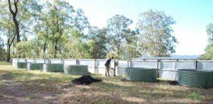 Bluetongue breeding facility